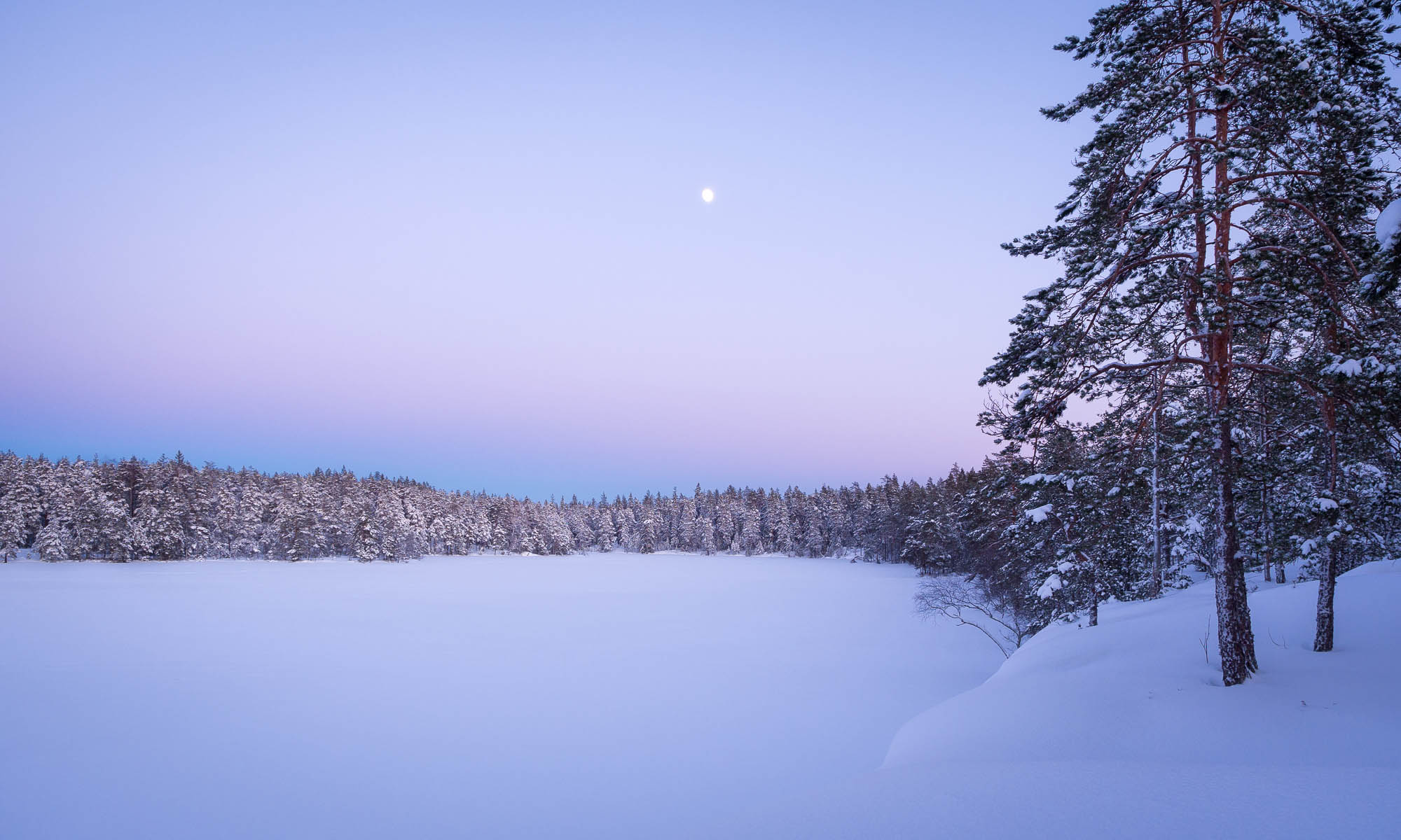 Nuuksio National Park in winter. Whole landscape covered in snow. Finnish nature near Helsinki, Finland.