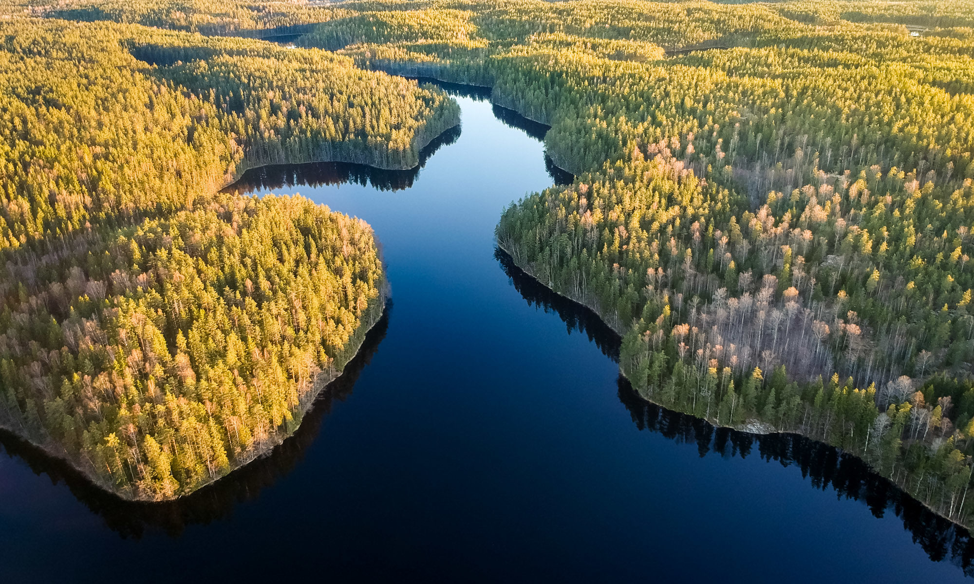 Nuuksio National Park in spring. Evening in May, calm lake at the sunset. Nature near Helsinki, Finland.
