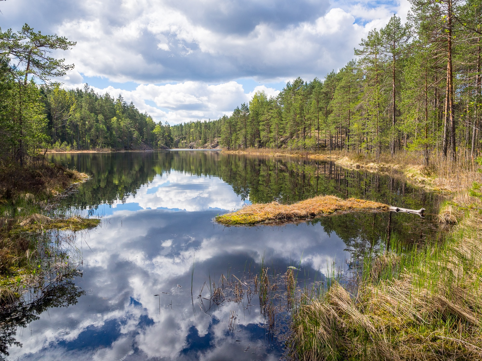 Nuuksio National Park in summer. Weather can change every day. Nature near Helsinki, Finland.