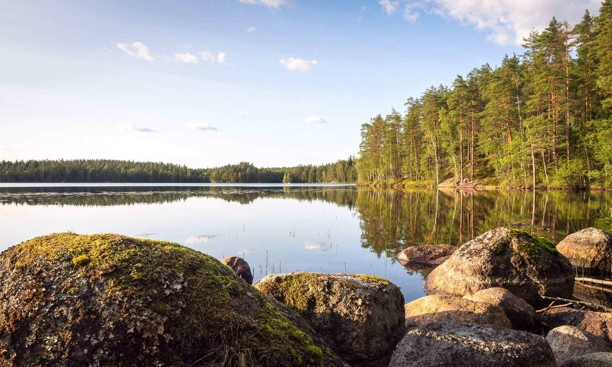 Nuuksio National Park in summer. The iconic Finnish nature with clear lake and forest. Nature near Helsinki, Finland.
