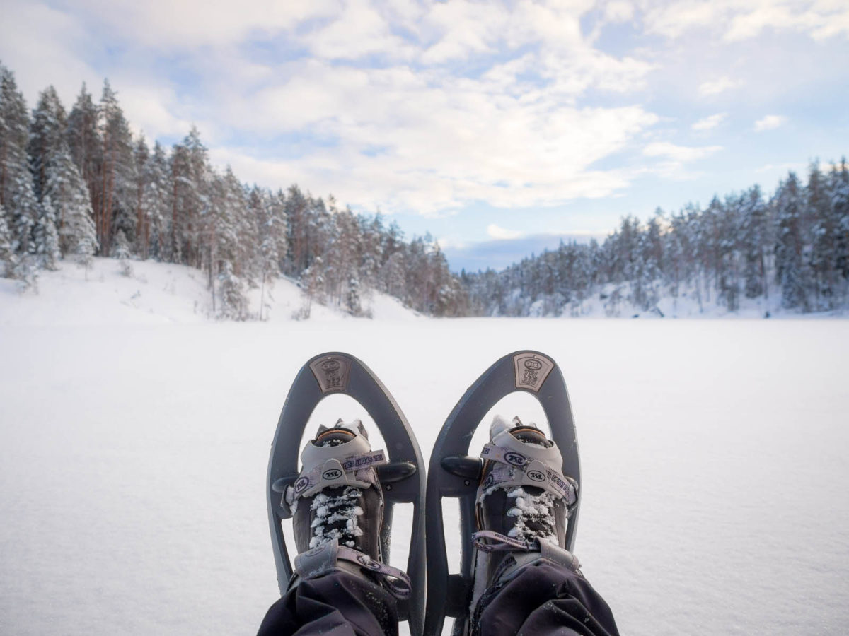 Nuuksio National Park in winter. Snowshoes and a quiet forest. Finnish nature near Helsinki, Finland.